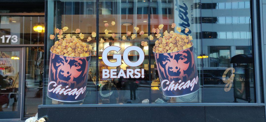 Bears Windows Graphics