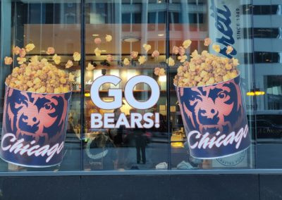 Bears Windows Graphics